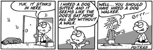 You should have hired a dog walker.