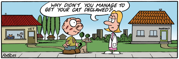 Why didn't you manage to get your cat declawed?