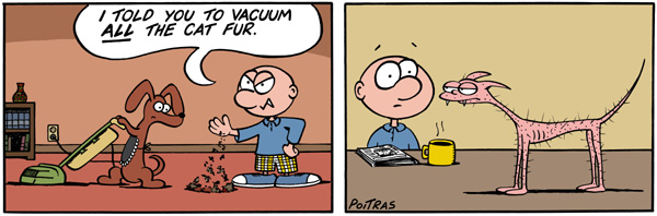 I told you to vacuum all the cat fur.